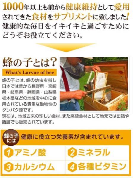 蜂の子 約1ヶ月分 元気チャージ アミノ酸ミネラル豊富 高級食材 カルシウム 健康食品 サプリメント_画像2