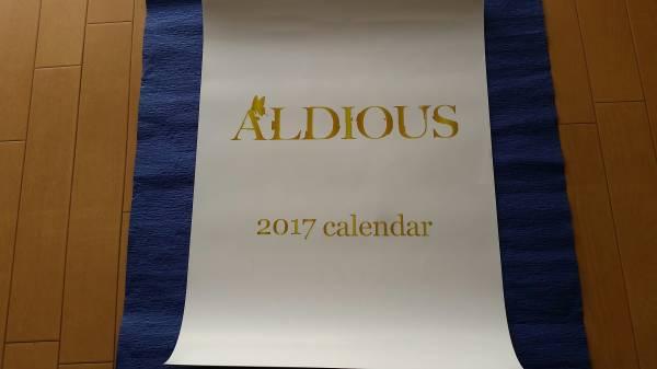 ★Aldious 2017 カレンダー 数量限定品 未使用新品 アルディアス 送料¥350 検)GALMET/DESTROSE/CYNTIA