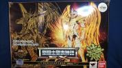 聖闘士聖衣神話 EX サジタリアスアイオロス 神聖衣 聖闘士星矢 黄金魂 初回購入特典