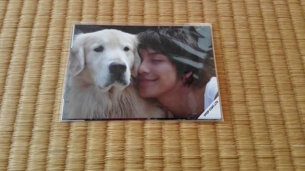 ■未開封 成宮寛貴 ファンクラブ購入写真 3枚■