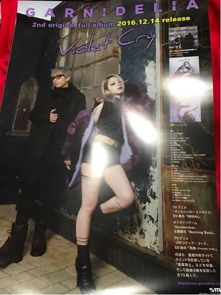 最後の1枚 GARNiDELiA[Violet Cry]告知ポスター新品 水橋舞 阿部尚徳