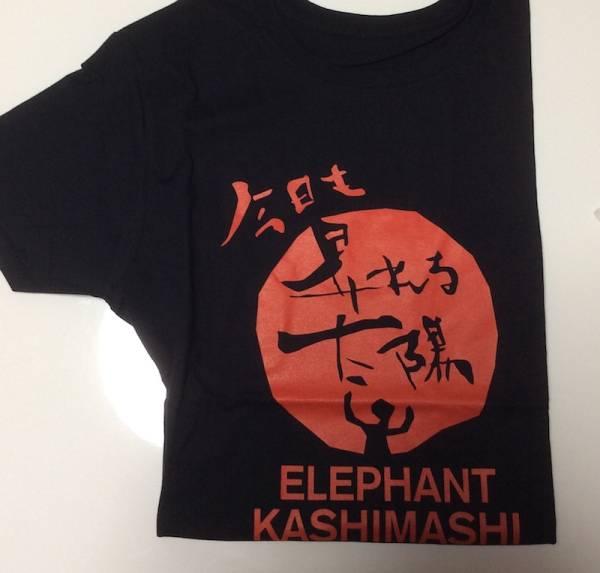 エレファントカシマシ・エレカシ Tシャツ 2009 昇れる太陽
