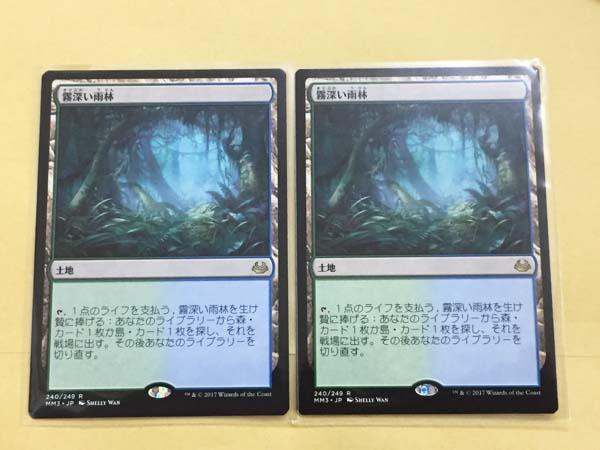MTG 霧深い雨林 日本語版 2枚セット モダンマスターズ2017