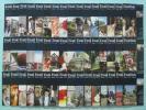 英語會話 - 正規品 スピードラーニング英語 全巻1~48巻 テキストセット