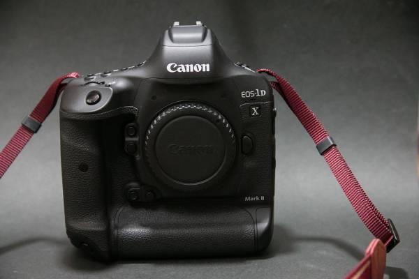 EOS-1D X Mark II (保証有) Cファーストカード64GB2枚
