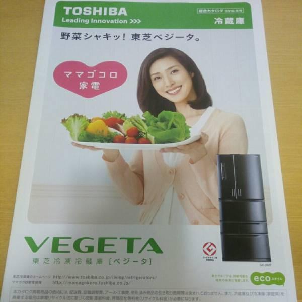 天海祐希 東芝カタログ 冷蔵庫 2010