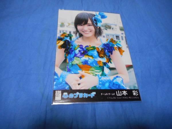 AKB48  山本彩 NMB48  心のプラカード