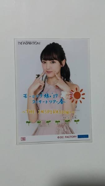 THE INSPIRATION!◆コレクション生写真Part1◆(16)飯窪春菜