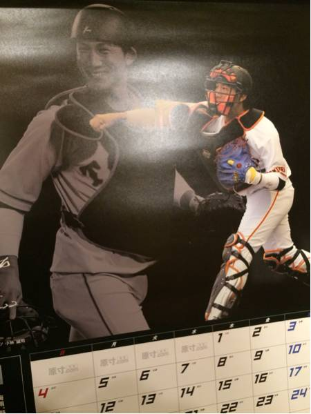 侍ジャパン 小林誠司、増井浩俊、日ハム 杉谷拳士 ゼット ベースボール カレンダー2017 非売品 グッズの画像