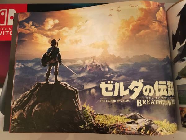 【カタログのみ】新品 Nintendo Switch Joy-Con (L) / (R) ネオン 本体 ゼルダの伝説 ブレス オブ ザ ワイルド Amazon限定特典無し グレー_画像3
