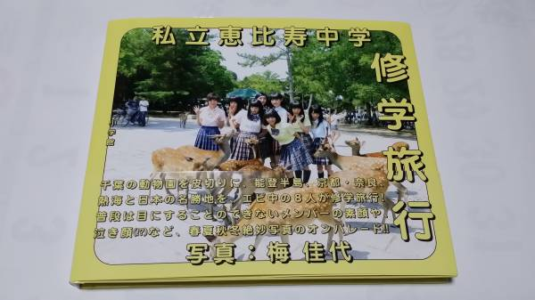 私立恵比寿中学 写真集 修学旅行 写真付 ライブグッズの画像
