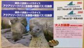 6月末まで有効 横浜八景島シーパラダイス 大人引換券ペア