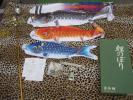 ■鯉のぼり 勇将鯉 お父さん鯉のぼり148cm 送料800円