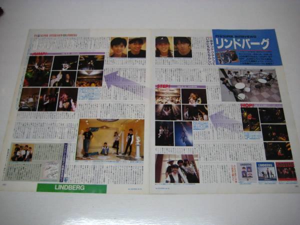 切り抜き リンドバーグ インタビュー 1990年 渡瀬マキ