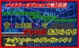 ★☆ 豪華特典付き![返金保証] 勝率8割 「バイナリーオプ