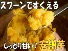 スプーンですくえる☆黄金の焼き芋【安納芋】しっとり甘い5kg
