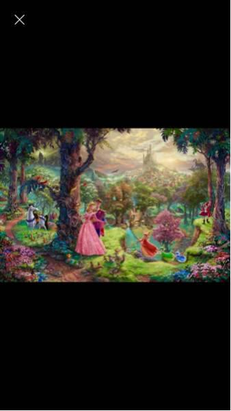 ☆眠れる森の美女 ポスター☆ シルクポスター 美女と野獣 ラプンツェル 白雪姫 アリエル リトルマーメード ディズニープリンセス ディズニーグッズの画像
