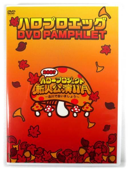 「ハロプロエッグ 2007 新人公演 11月品川」DVDパンフレット