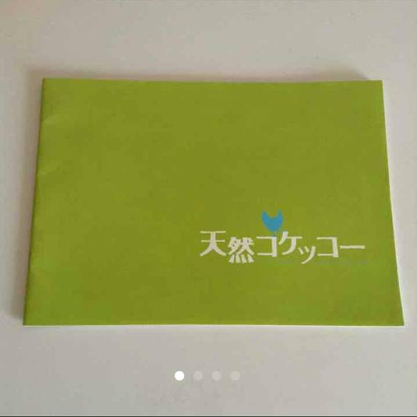 【レア】天然コケッコー プレス限定 パンフレット 夏帆 岡田将生 非売品 グッズの画像