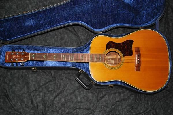 ★ Hillbilly ヒルビリー ★ ハカランダ アコースティックギター ハードケース付き 【 W-45 】