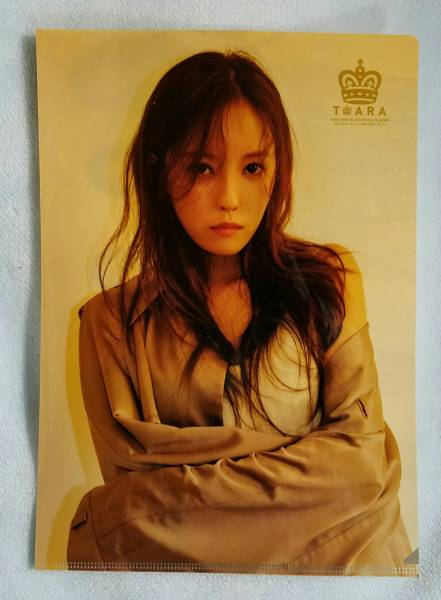 T-ARA ヒョミン SPECIAL SHOWCASE IN JAPAN クリアファイル 未使用 即決 Hyomin ファンミグッズ