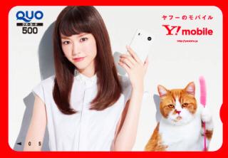 Y!mobile 桐谷美玲さん ふてにゃん 非売品 クオ グッズの画像