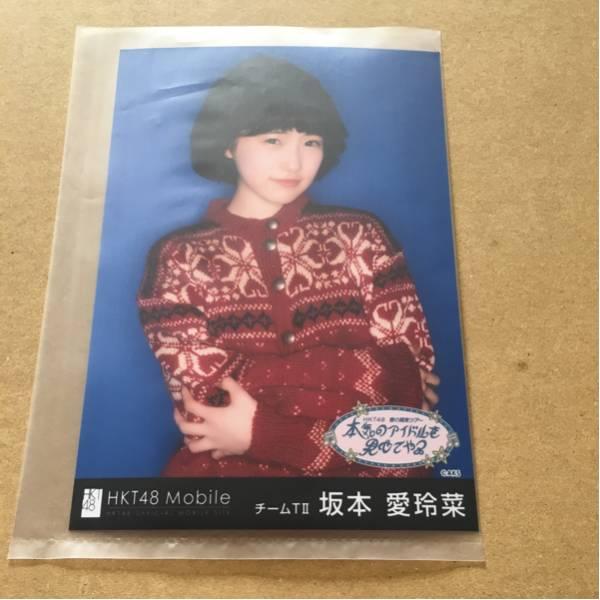 HKT48 春の関東ツアー 群馬 2/25 Mobile当選 壁紙生写真 坂本愛玲菜 ライブグッズの画像