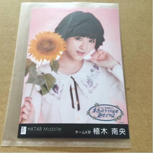 HKT48 春の関東ツアー 群馬 2/25 Mobile当選 壁紙生写真 植木南央 ライブグッズの画像