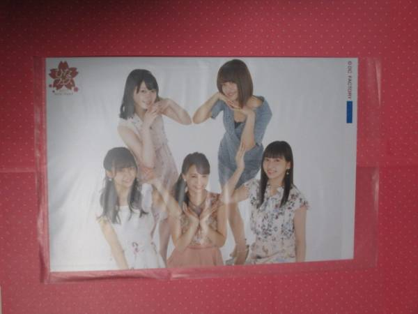 【Juice=Juice(ジュースジュース)集合】'17 ひなフェス /ガチャガチャ写真 ライブグッズの画像