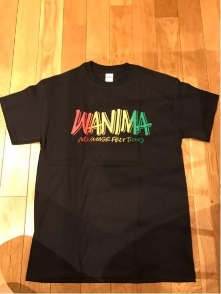 WANIMA ワニマ Tシャツ M pizza of death ピザオブデス HI-STANDARD ハイスタ ライブグッズの画像