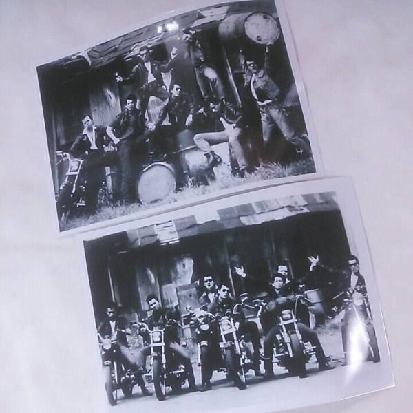 クールス舘ひろしポスタースチール写真