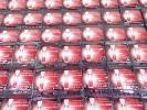 R238C☆カネボウ ブランシール スペリア ホワイトニング Wコンクルージョンα 0.4ml×114P 未開封