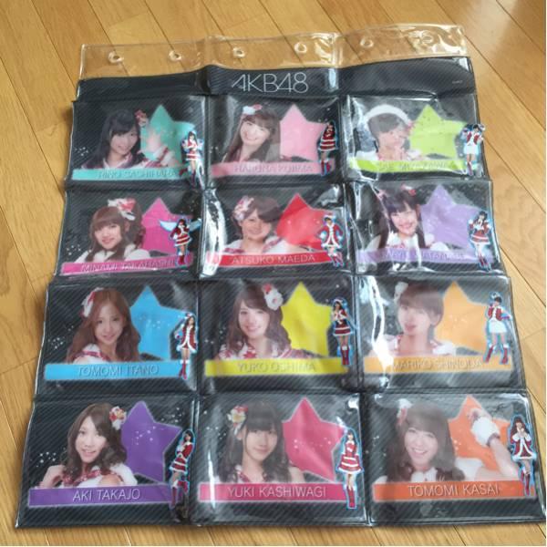AKB48 壁掛けビニール製 ポケット 一箇所汚れあります 指原莉乃 小嶋陽菜 各メンバーのシール貼りあります ライブ・総選挙グッズの画像