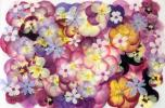 pushed flower material : viola various 52