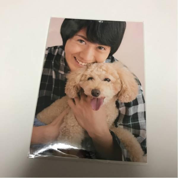 太田基裕 トレカ トレーディングカード 特典 ブロマイド 写真