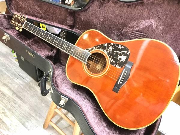 Cat rock guitar img600x450 1492509484oiggu430198
