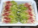 ◆バリバリの新芽◆北海道最北の天然行者にんにく◆画像と同等品◆【うまいっしょ山菜工房】?