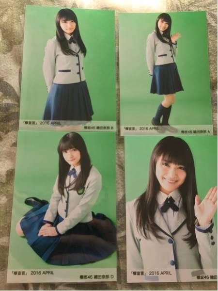 欅坂46 欅宣言 april 生写真 4種 コンプ 織田奈那