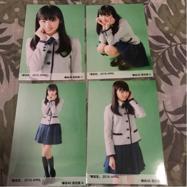 欅坂46 欅宣言 april 生写真 4種 コンプ 原田葵