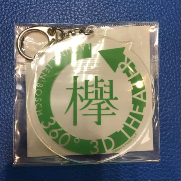 欅坂46 ラグーナテンボス限定 3Dシアターアクリルキーホルダー