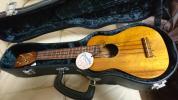 レア FUJIGEN ウクレレ Pupukea ププケア UF-20A 富士弦楽器製造 ハードケース付き
