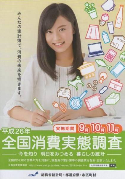 全国消費実態調査 小島瑠璃子さん A2判ポスター 非売品 こじるり グッズの画像