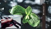 VITACIG ビタシグ ビタミンを吸う電子タバコ マックスメンソール 日本オリジナルモデル 限定 送料無料 人気商品 ビタシグジャパン正規品