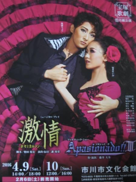 ■宝塚月組公演チラシ■『激情/Apasionado III』(市川市)5枚