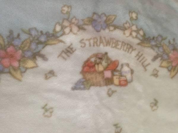 イチゴの丘LAMORNE ADVANCEふんわりもうふTHESTRAWBERRYHILL毛布ブランケット水色みずいろブルー寝具防寒具サイズ143x201cm_画像2