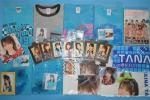 ハロー プロジェクトHello!Projectモーニング娘。水着アイドル田中れいな歌手セットREINA TANAKA日本グッズ生写真Tシャツ新品タオル本JAPAN