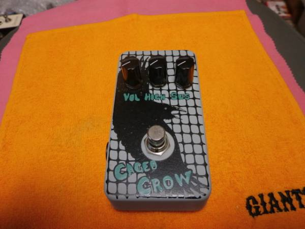Flickinger Caged Crow Distortion