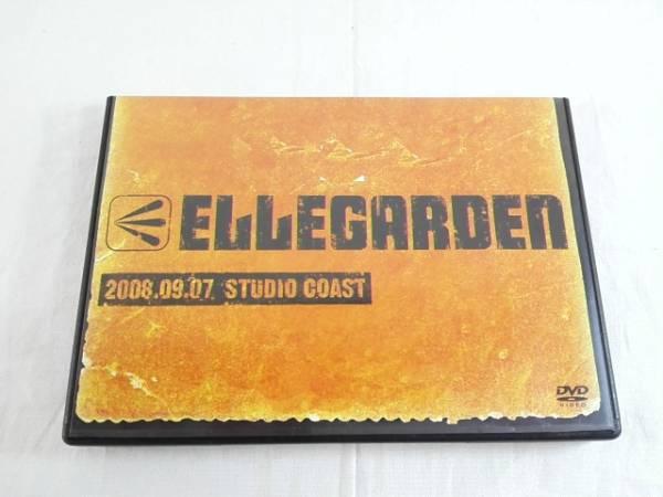 ELLEGARDEN 2008.09.07 STUDIO COAST ライブグッズの画像