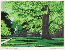 ◆大本靖 『初夏の北大農場B』 木版画 直筆サインあり 北海道小樽作家