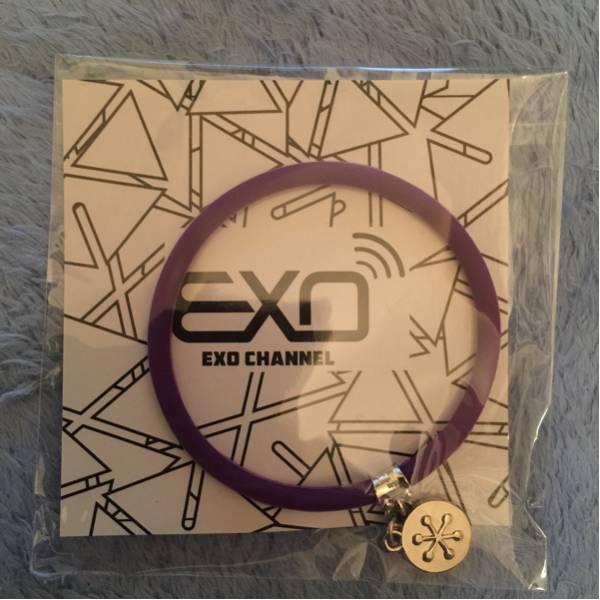 EXO シウミン XIUMIN シリコンブレスレット ペンミ 2015 グッズ コンサートグッズの画像